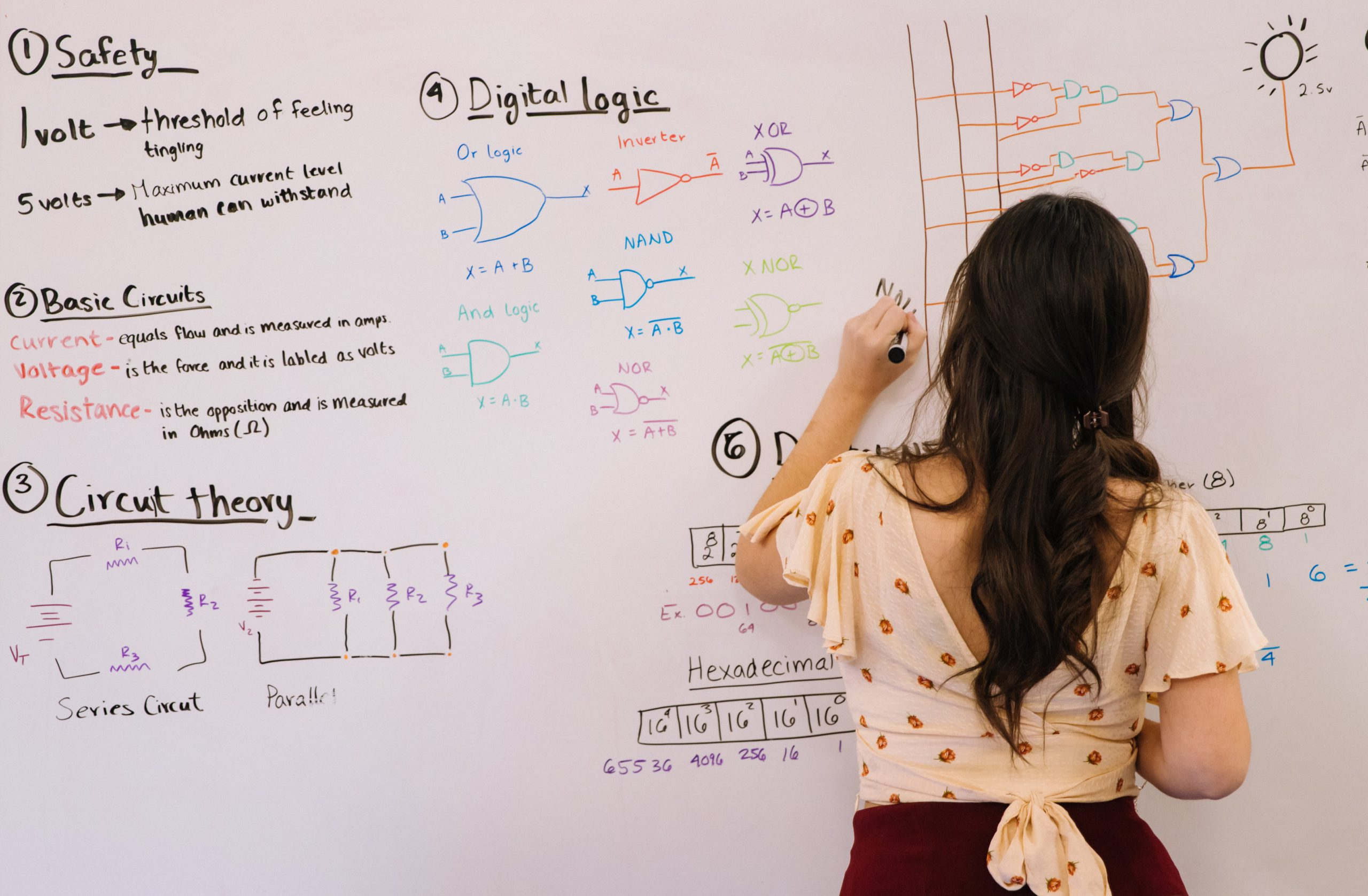 Data analysis, perfect for growing ideas.